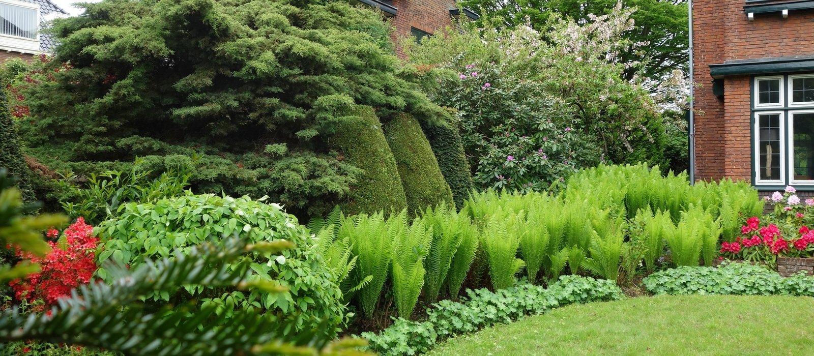 Exotische Garten und Pflanzenpracht